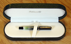 The Polar Lights fountain pen in its rather large presentation box.